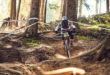 Dirt, drops and downhill