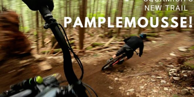 Remy Metailler riding Pamplemousse