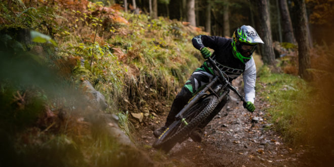 Nukeproof Dissent – 2020 Year of the Kestrel